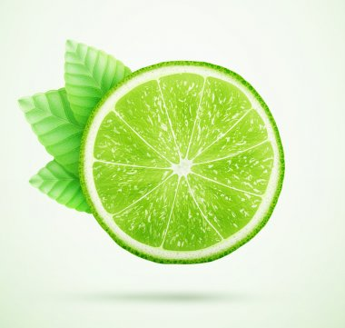 Fresh lime with leaves eps10 vector illustration stock vector