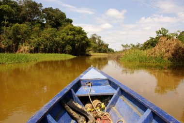 On the way of going fishing in Amazon jungle river, during the late of afternoon, in Brazil.