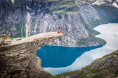 Photo Norway Mountain Trolltunga Odda Fjord Norge Hiking Trail