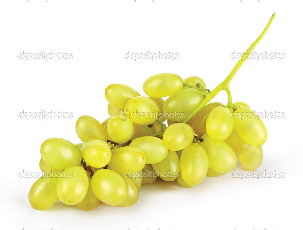 Картинки по запросу виноград жовтий