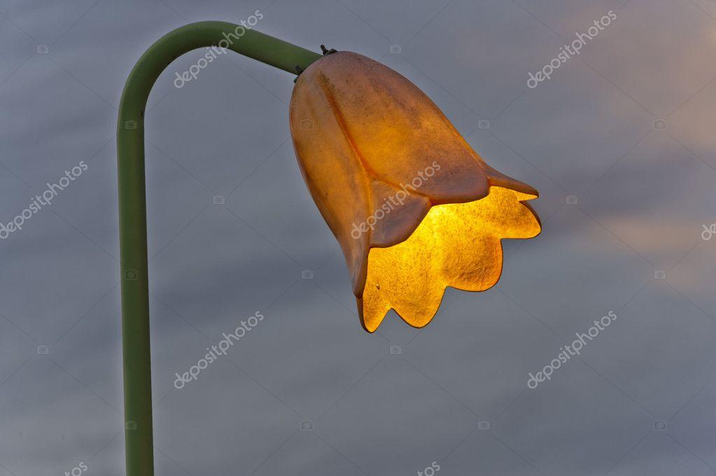 Lampada Fiore Tulipano : Luce lampada fiore isolato u2014 foto stock © izanbar #47727183