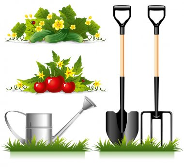 Gardening related items