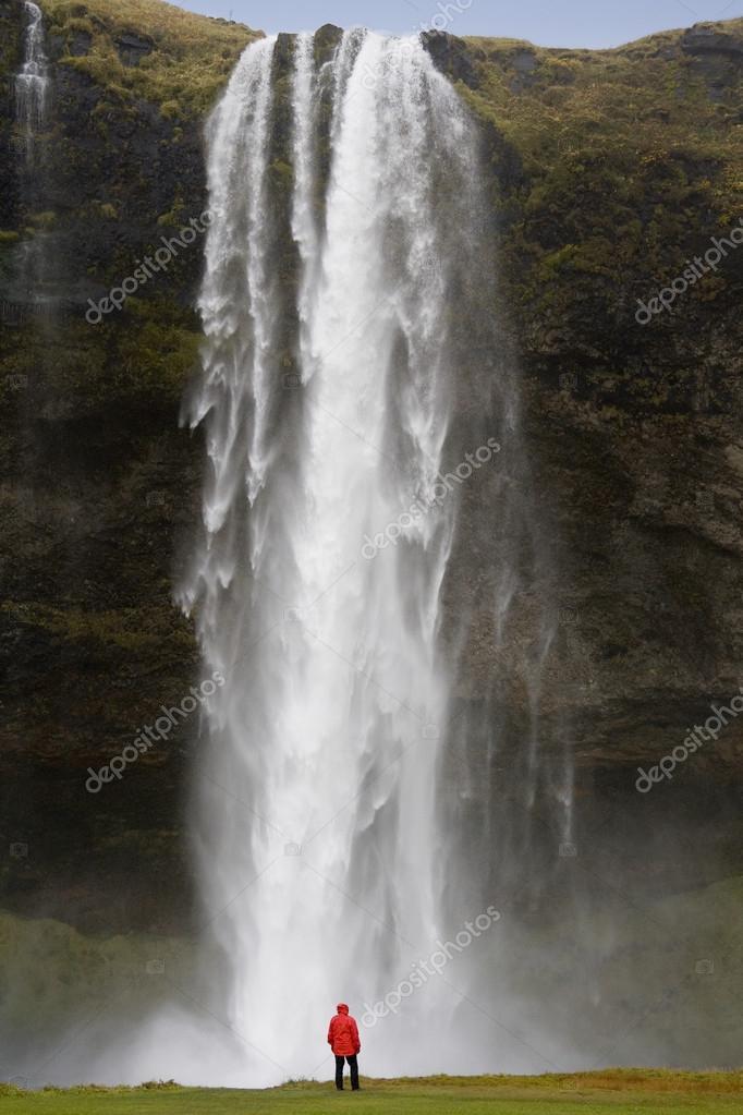 Фотообои Seljalandsfoss Waterfall - Iceland