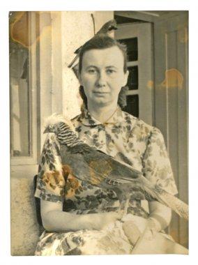 "Картина, постер, плакат, фотообои ""женщина с плюшевыми птицами "", артикул 28163883"