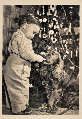 Christmas time (Boy, dog - cocker spaniel, Christmas tree)