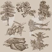 Fényképek fák, növények és virágok