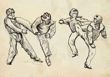 TaeKwon-Do. Hand drawn (calligraphic and grunge) vector