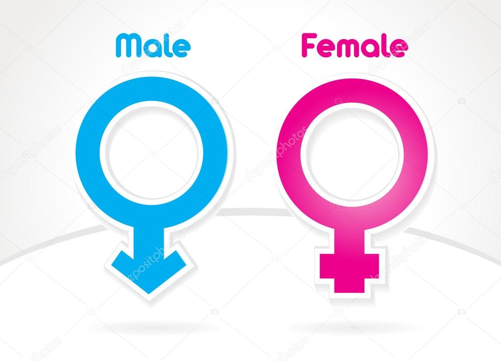 Male And Female Sex Symbol Vector Stock Vector Rikky18 33848521
