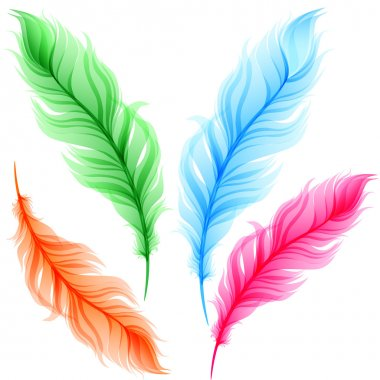 Set of colorful transparent feathers stock vector