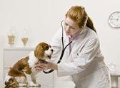 mladý ženský lékař