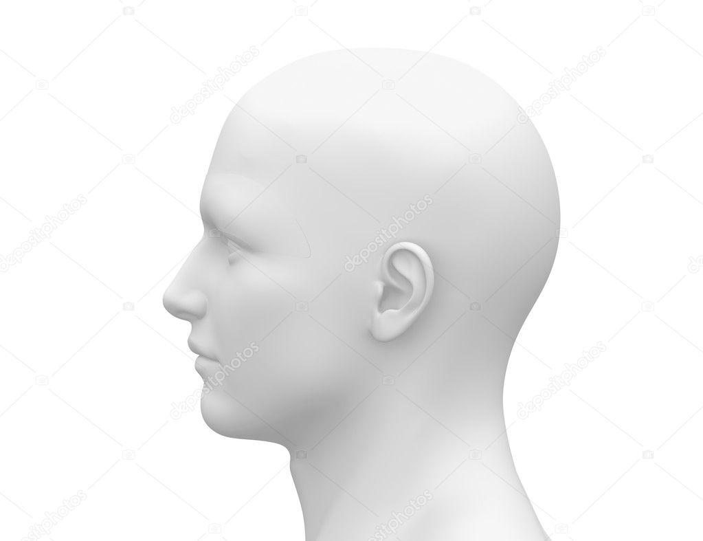 Blank White Male Head - Side view