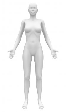 Blank Anatomy Female Figure - Front view