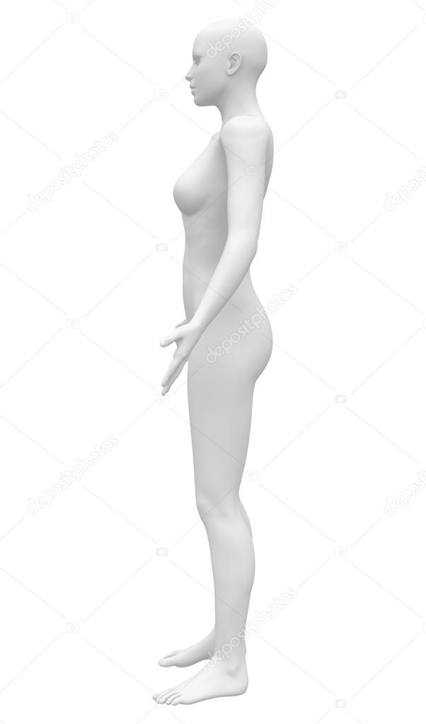 blank anatomy female figure side view stock photo decade3d