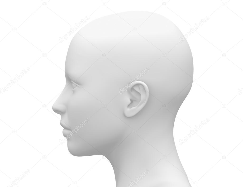 Female Head Muscles Anatomy Side View Stock Photo Decade3d
