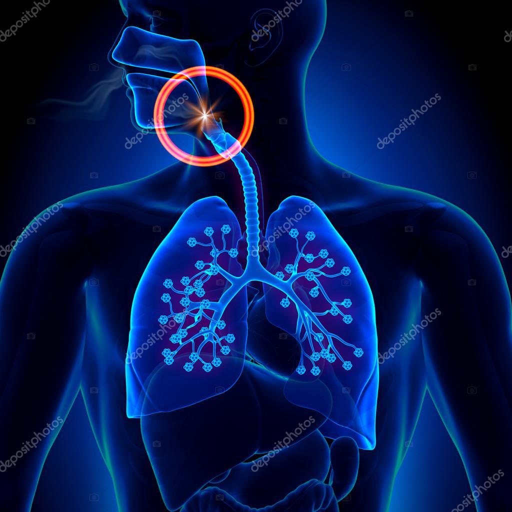 apnea del sueño obstrucción - apnea — Foto de stock © decade3d #48099823
