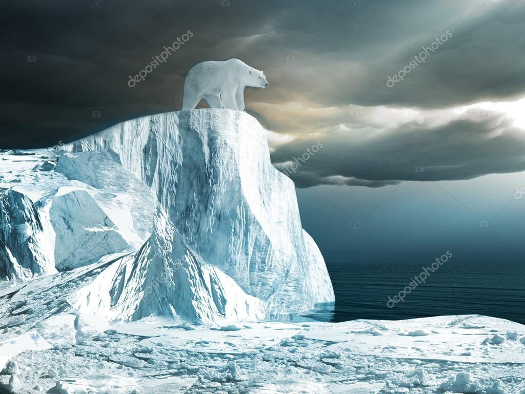 Polar bear on top of the iceberg