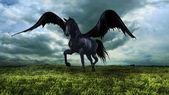 Fotografia cavallo alato di fantasia