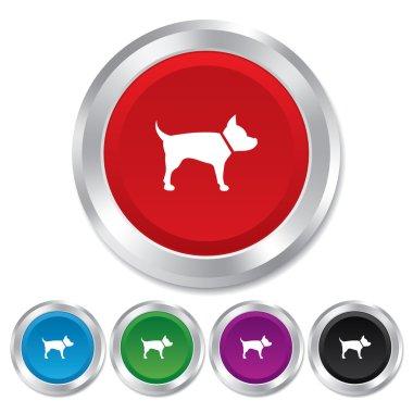 Dog sign icon. Pets symbol.