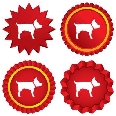 Dog sign icon. Pets medal symbol.