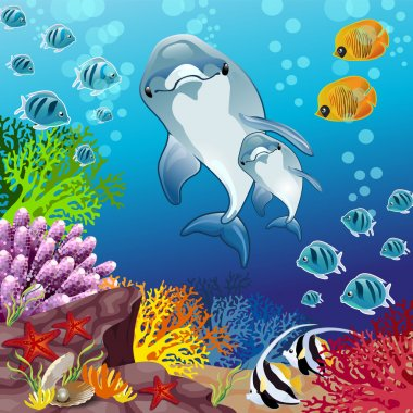 Dolphins of marine background