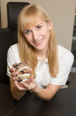 Dental technician presenting model of human denture