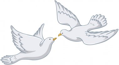 White Pigeons Flying Together