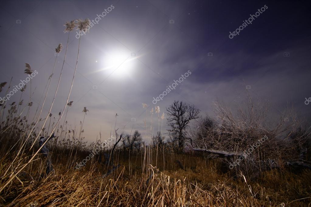 Full moon halo rays - night full moon landscape