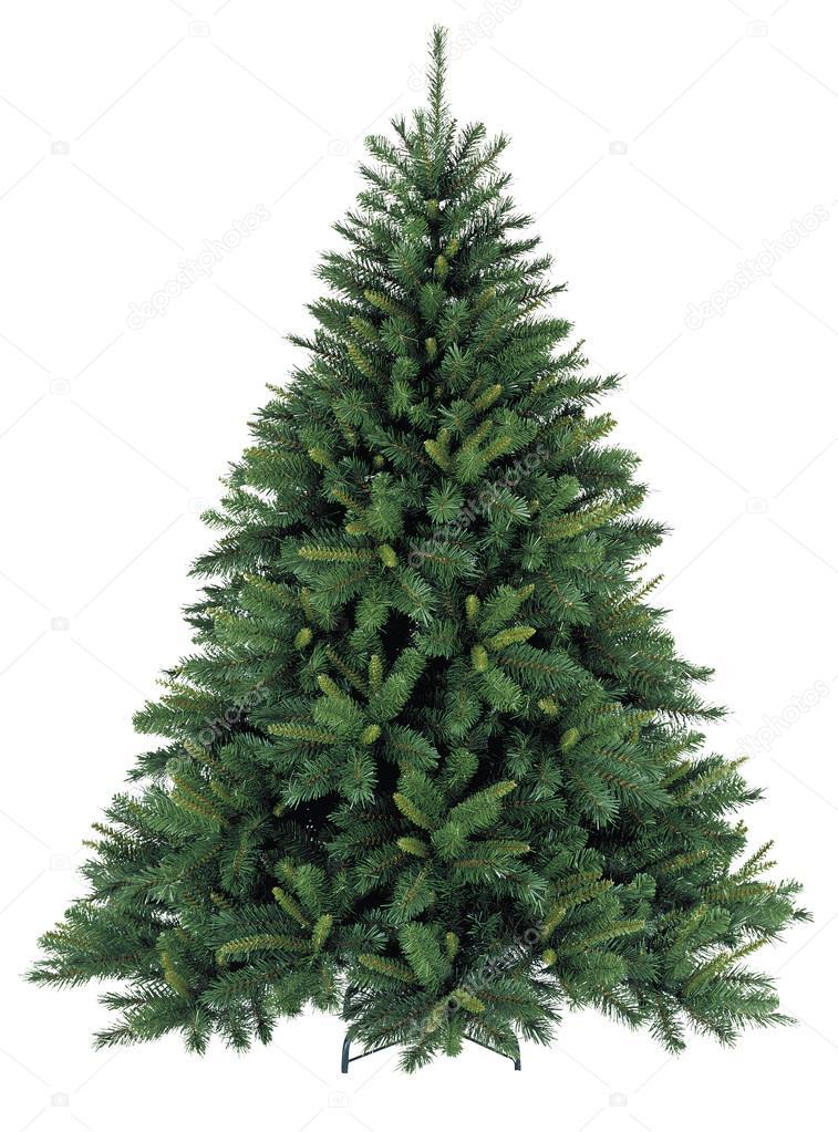 Голая елка без украшений — Стоковое фото © susanna0358 ...