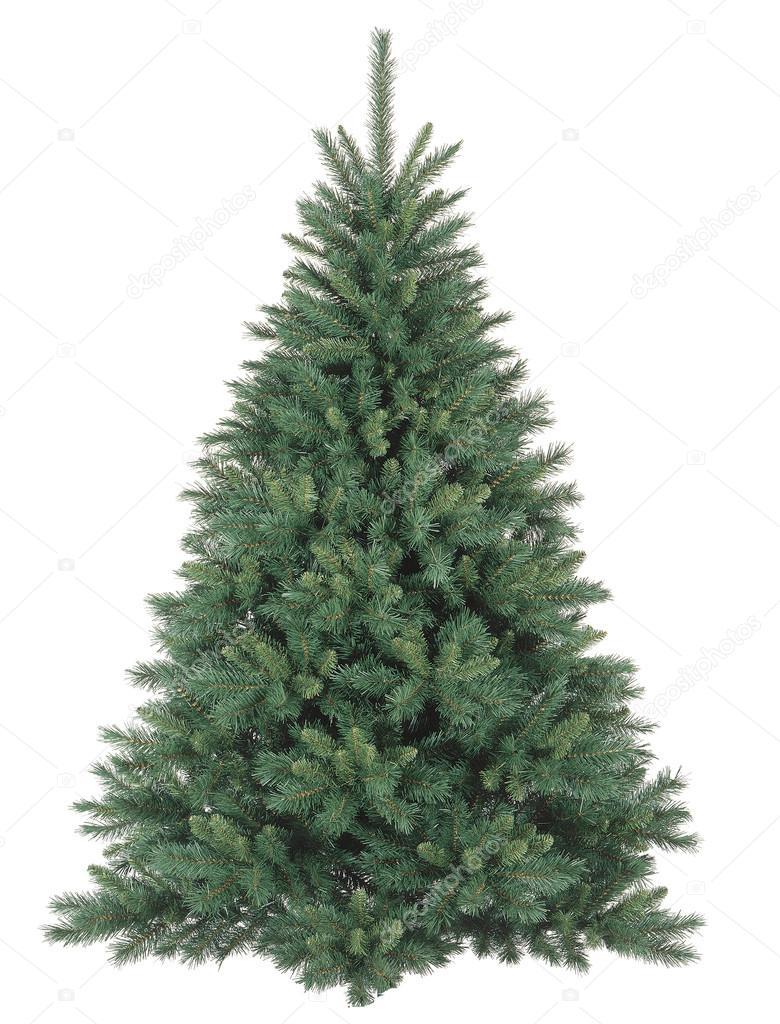 Rbol de navidad sin adornos foto de stock susanna0358 - Arbol de navidad adornos ...