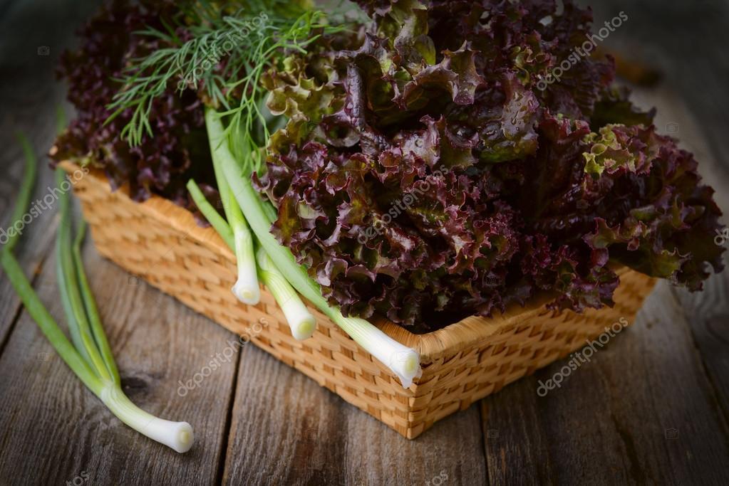 Fresh purple lettuce and chive in basket