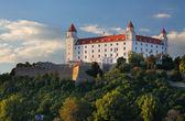 Fotografie Bratislavský hrad