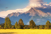 Photo Symbol of Slovakia - Mount Krivan
