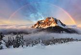 Fotografie vrchol hory v zimě