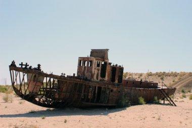 The ships in desert