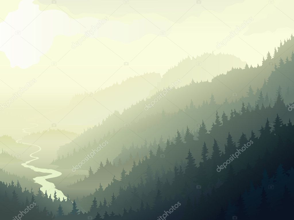 Фотообои Wild coniferous wood in a morning fog.