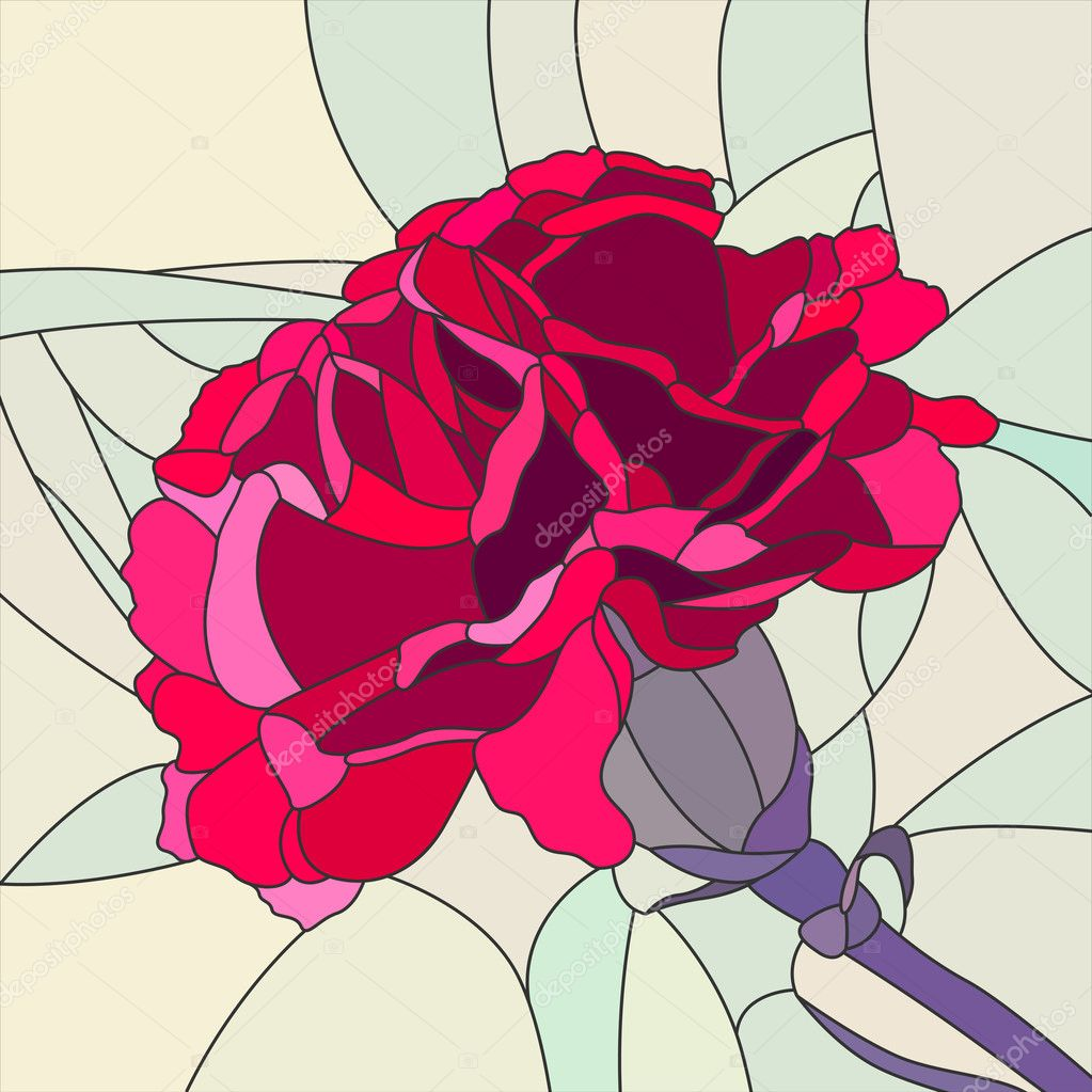 Vector illustration of flower red carnation.