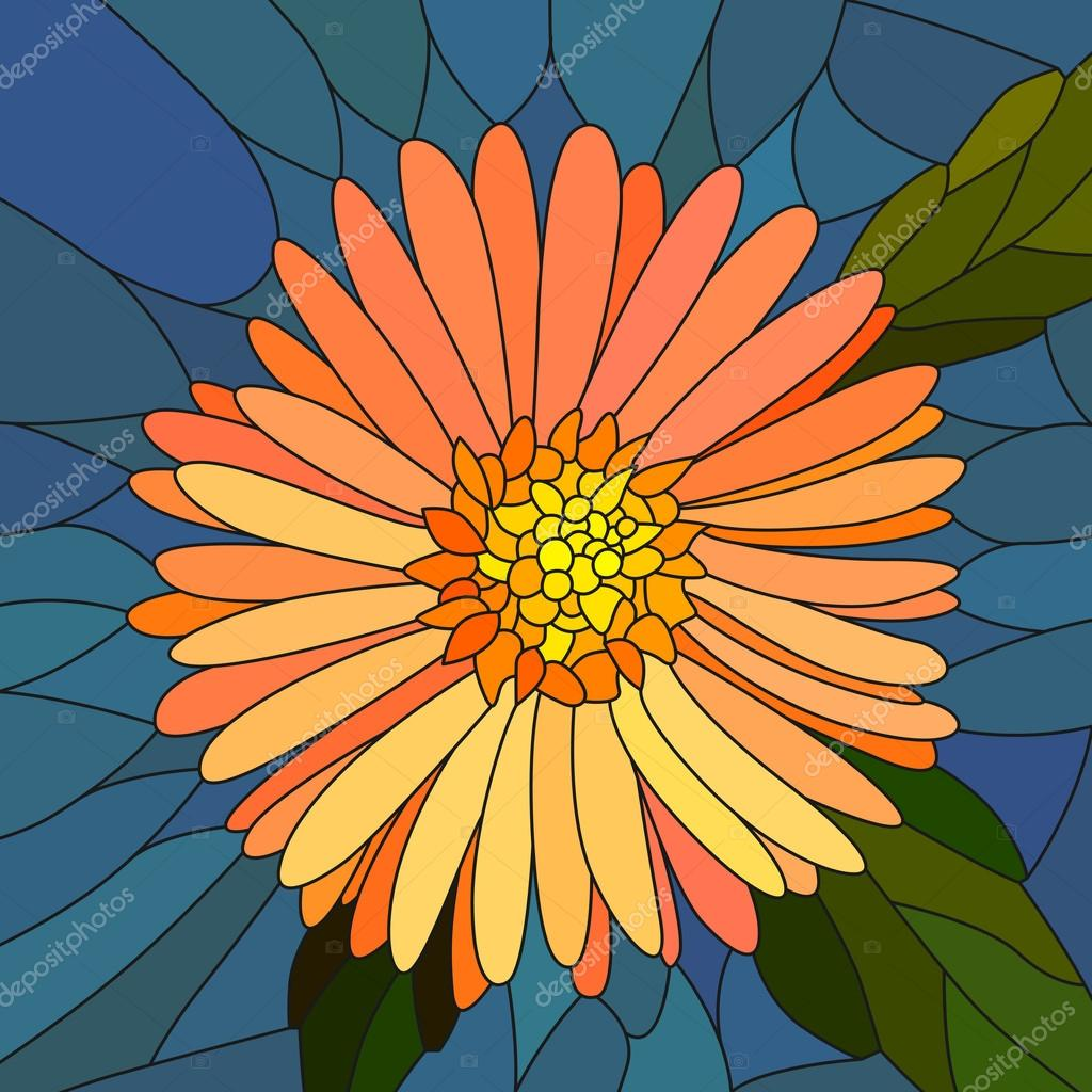 Vector illustration of flower orange aster.