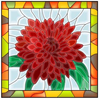 Vector illustration of flower chrysanthemum.