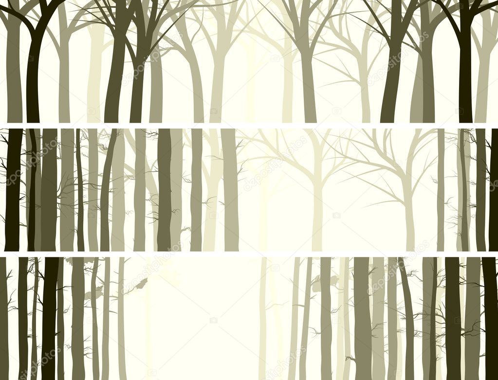 Horizontal banner with many tree trunks.