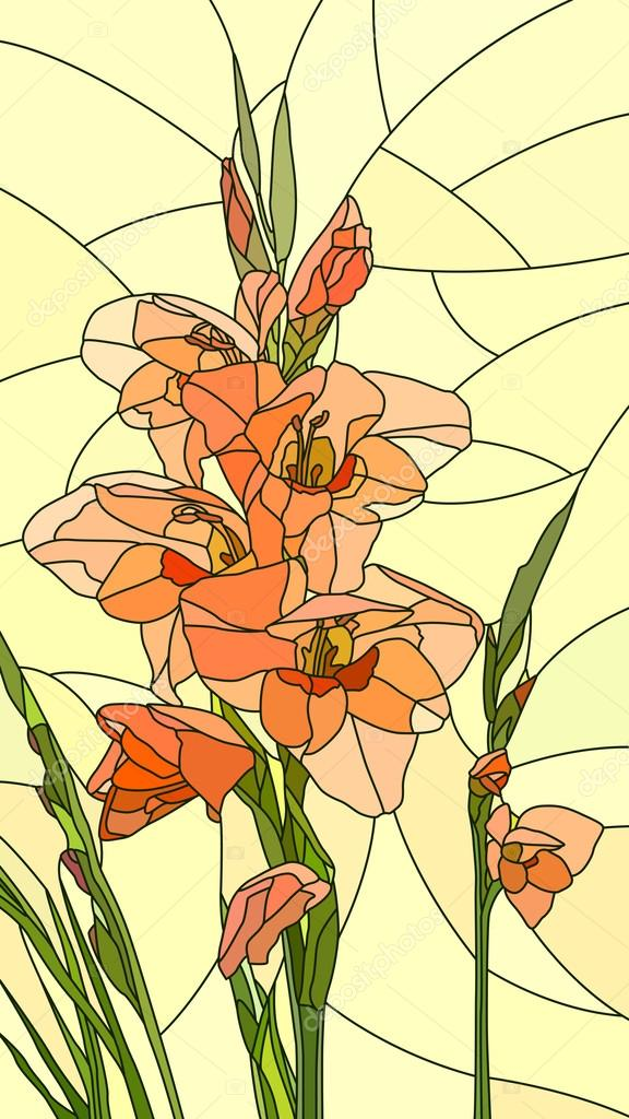Vector illustration of flowers red gladiolus.