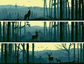 horizontální bannery volně žijících živočichů v lese kopce