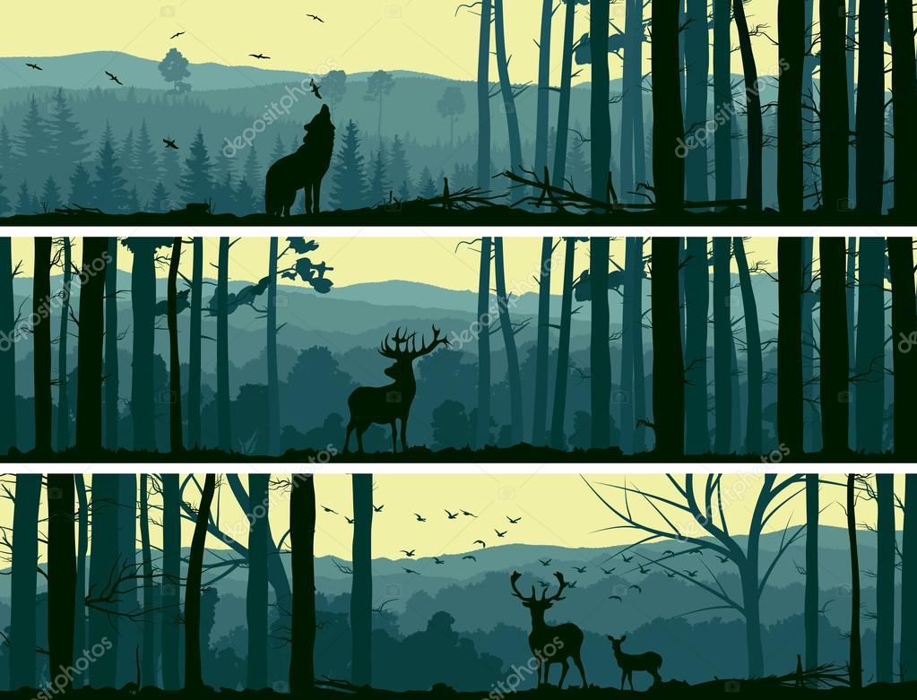 Horizontal banners of wild animals in hills wood.
