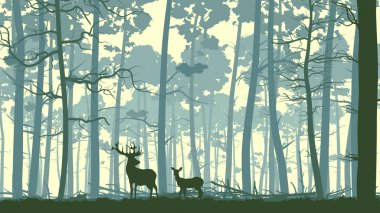Vector abstract illustration of wild deer in forest with trunks of trees. stock vector