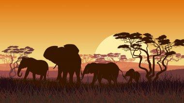 Horizontal illustration of wild animals in African sunset savann