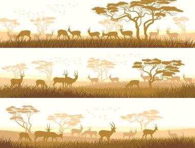 Horizontal banners of wild animals in African savanna.
