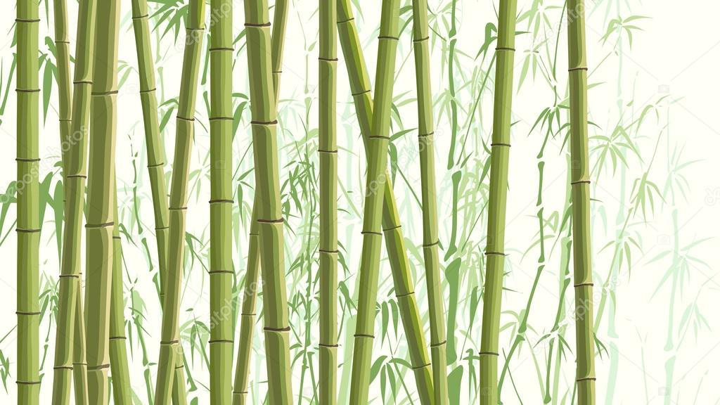 Horizontal illustration with many bamboos.
