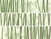 Fényképek sok bambusz vízszintes banner csoportja