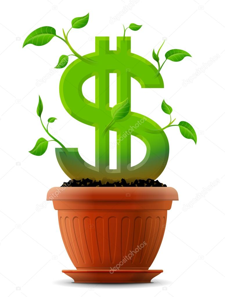 Growing Dollar Symbol Like Plant With Leaves In Flower Pot Stock