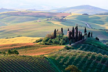 Soft light over the rolling Tuscan hills and a farmhouse in Val d'Orcia in Tuscany popular amongst tourists stock vector