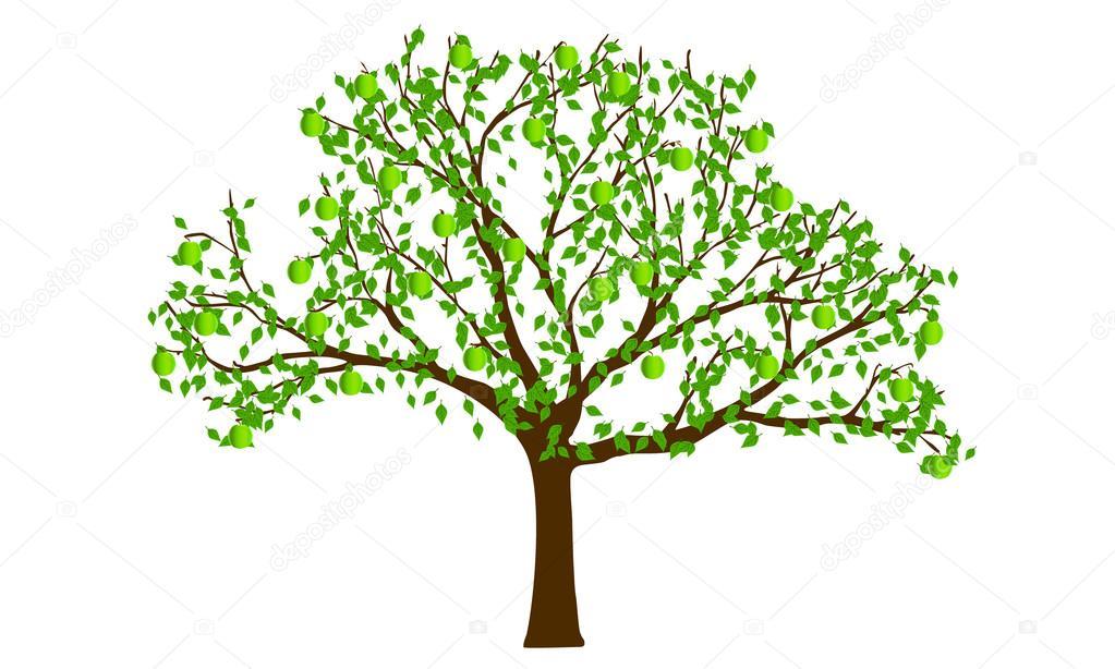 Green Apple Tree Stock Vector C Snesivan888 20069135